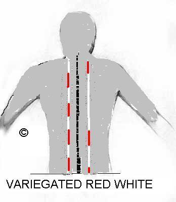 variegated lines